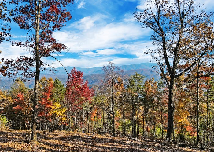 Tract 6 Look Rock Crest Drive, Maryville, TN 37803